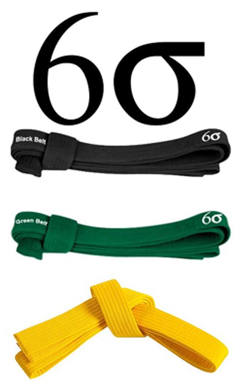 Six Sigma Belt Levels